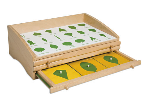 This is a selection of Montessori natural science materials